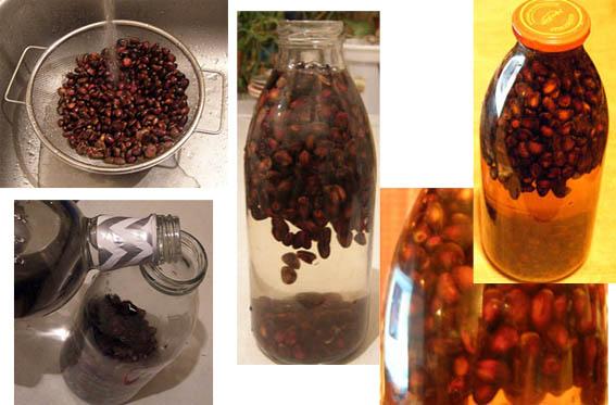 Рецепт настойки на кедровых орехах на спирту