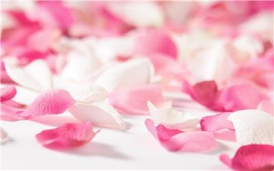 Відвар з пелюсток троянд для стимуляції овуляції