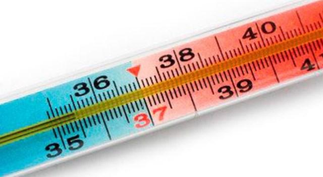 понижена температура тела